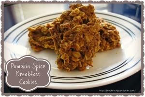 pumpkinspicebreakfastcookies