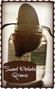 sweet potato greens