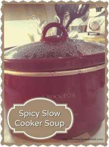 Spicy Slow Cooker Soup